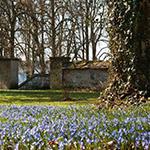 Gartenkalender Februar 2012