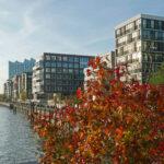 Häfen im Wandel, Hamburg, Hafencity